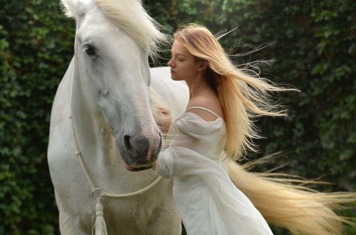 Interpretación de sueños caballo – ¿Qué significa soñar con un caballo?