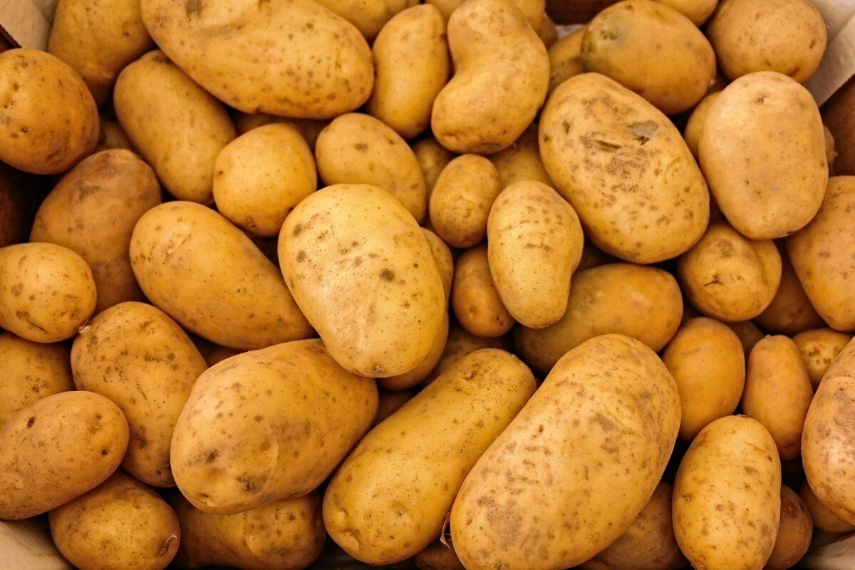 ¿Qué significa soñar con patata?